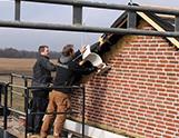Trelborg-tømrer-tag-herning